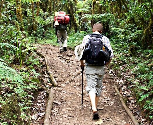 Pilihan Akomodasi Di Ubud Bali Untuk Backpacker